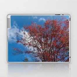 Menominee Red Laptop & iPad Skin