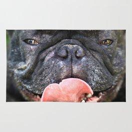 Französische Bulldogge Rug