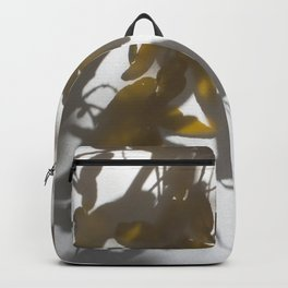 Veiled Nature 5 Backpack