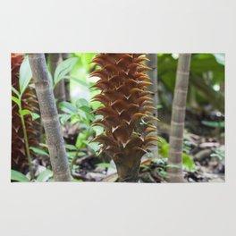 Pineapple ginger Rug