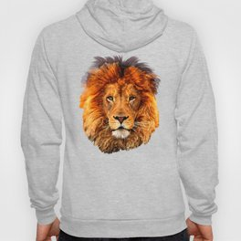 Old Lion Hoody