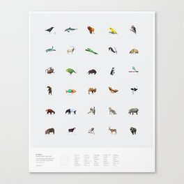 In Pieces – Species Collection Canvas Print