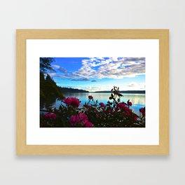 Pink Roses against Blue Sky & Puget Sound Vashon Island Framed Art Print