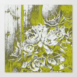 Chartreuse Green Hen and Chicks Canvas Print