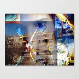 Sunday 16 December 2012: visual stimulus over reaction Canvas Print