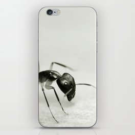 Drunken Ant iPhone Skin