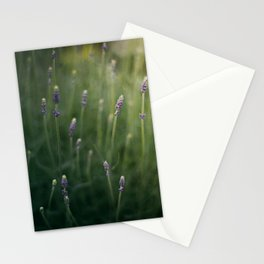 Blooming Lavender Stationery Cards