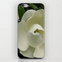 Fleur de Magnolia iPhone Skin