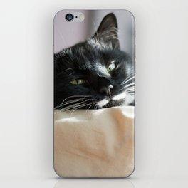 Black Cat Chilling iPhone Skin