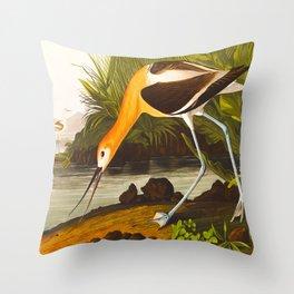 American Avocet Vintage Bird Illustration Throw Pillow
