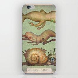 Peculiar Marine Species iPhone Skin