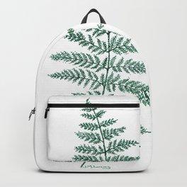 New Zealand Tree Fern Backpack