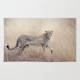 Cheetah on the savannah Rug