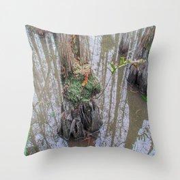 The  Swamp Fairy's Home Throw Pillow