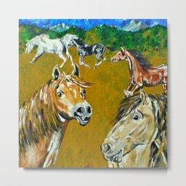 Peruvian Paso Horses Metal Print