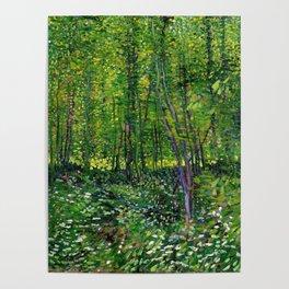 Vincent Van Gogh Trees & Underwood Poster