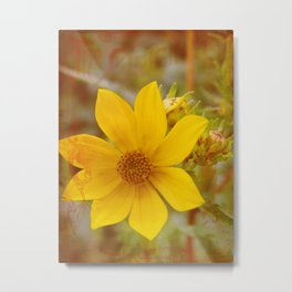 The Original Yellow Flower Metal Print