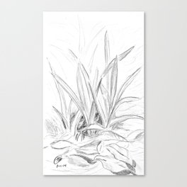 Leaves and Grass Canvas Print