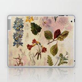 Botanical Study #1 Laptop & iPad Skin