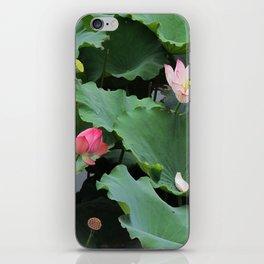 Lotus & lotus iPhone Skin