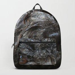 wet puppy portrait Backpack
