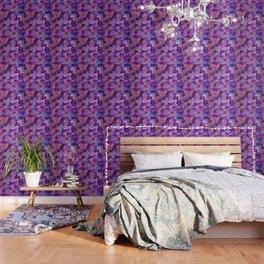 cats new color popularity-199 Wallpaper