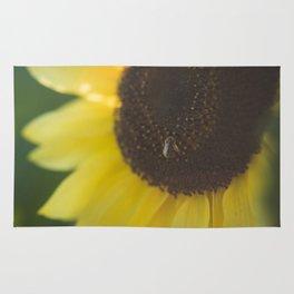 Summer Day Sunflower | photography Rug