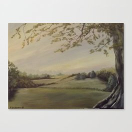 Blissful Meadow Canvas Print
