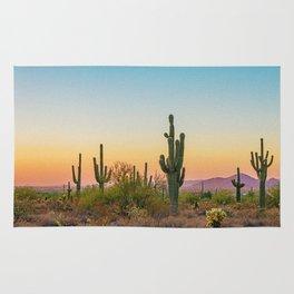 Desert / Scottsdale, Arizona Rug