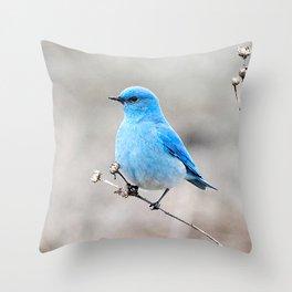 Mountain Bluebird on the Tansy Throw Pillow
