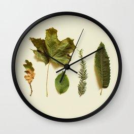 COMPOSIZIONE FOGLIE I Wall Clock