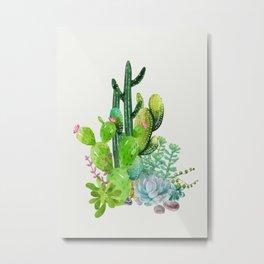Cactus Garden II Metal Print