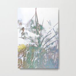 Freedom (Dandelion) Metal Print