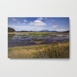 Marsh, Lopez Island, WA Metal Print