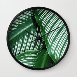 Green Tropical Leaves with White Stripes Closeup Wall Clock