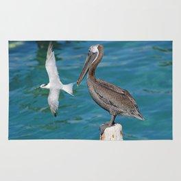 Pelican and Tern Rug