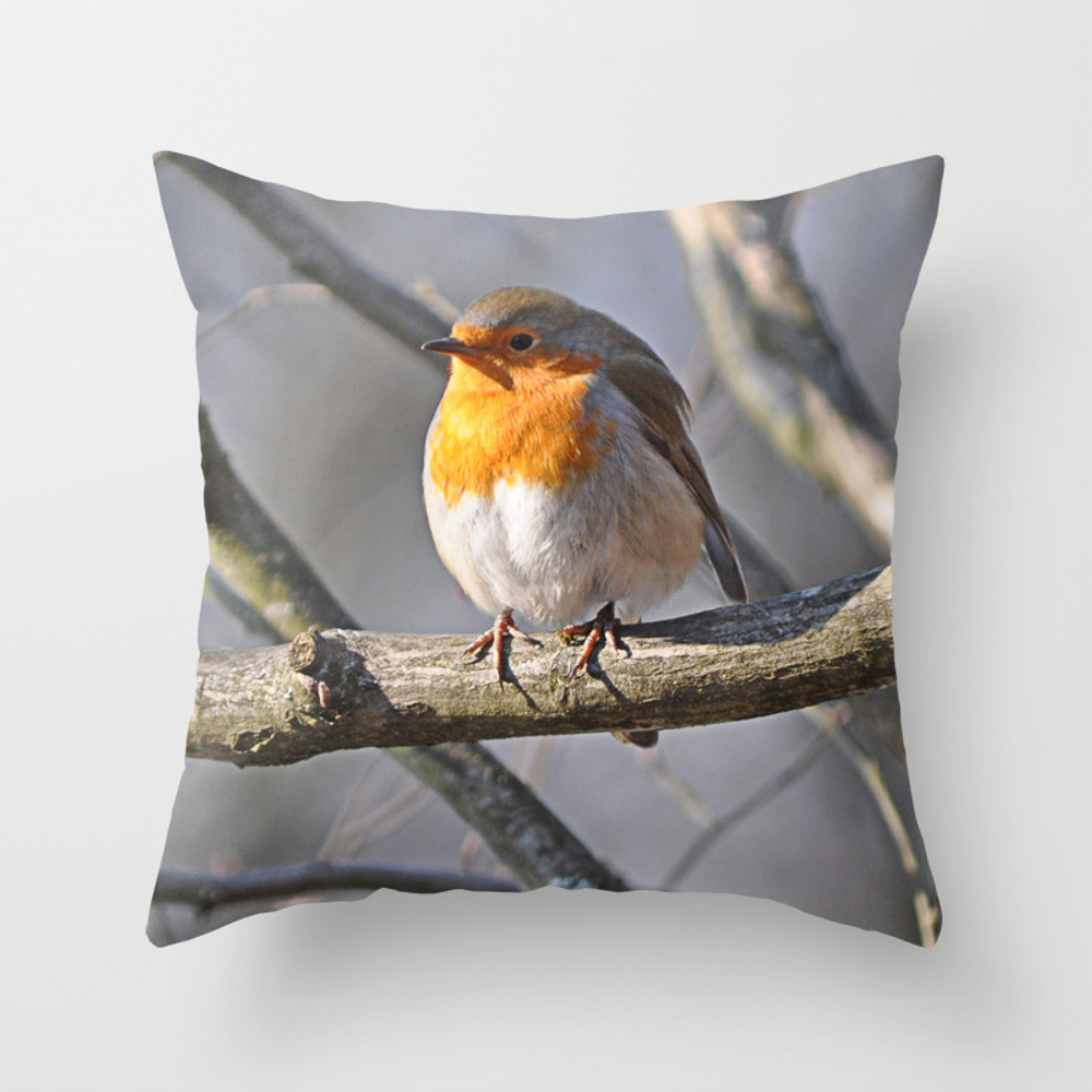 Robin Redbreast Throw Pillow by Pirminnohr (PLW915575) photo