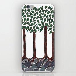 A Walk in the Woods iPhone Skin