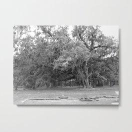 Mossy Oak Metal Print