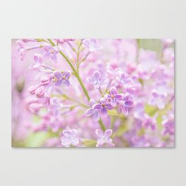 Lilac Flowers Mist Canvas Print