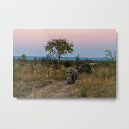 A Rhinoceros and a Sunrise in South Africa Metal Print
