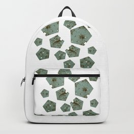 Pentagons of May 28 Backpack