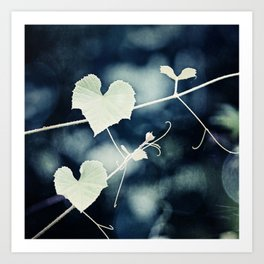 Heart Love Nature Photography, Hearts Botanical Print, Navy Blue Green Photograph, Bedroom Photo Art Print