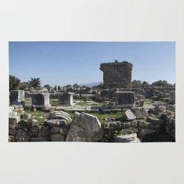 Excavations of Gortyn Rug