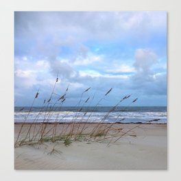 Sea Oats in the Wind Canvas Print