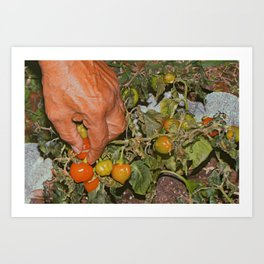 Hands of the Immigrant Art Print