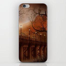 Asian Bridge iPhone Skin