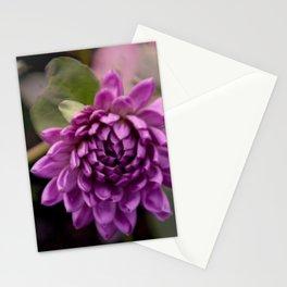 la vie en violet Stationery Cards