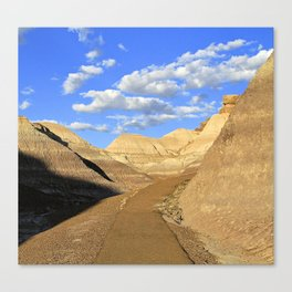 The Path Less Traveled--Petrified Forest, Arizona Canvas Print