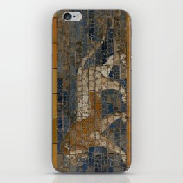 Processional Way - Babylon iPhone Skin